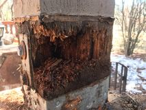 Rotted post. A rotted porch post. Water damage to a large doug fir post.  Structural damage caused by moisture Stock Photography