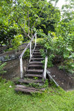 Rotted stairs. An old, weathered staryway in poor condition in a tropical, wet environment Royalty Free Stock Photo