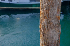 Rotted wood pier piling. On a working dock Royalty Free Stock Image