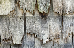 Rotted wood siding. Wood siding shingles rotted by long exposure to the elements Stock Image