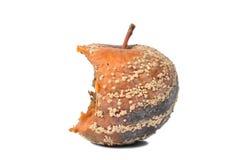 Rotten Apple stock photos