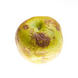 Rotten apple. Isolated on white Stock Images