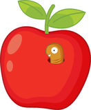Rotten apple. Illustration of a worm in an apple Stock Photography