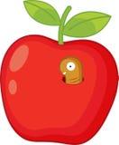 Rotten apple Stock Photography