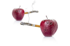 Rotten apple with a cigarette, the concept of harm smoking. Rotten apple with a cigarette, the concept of harm of smoking on a white background Stock Photos