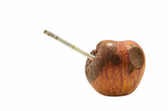Rotten apple with cigarette Royalty Free Stock Photo