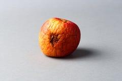 Rotten apple Stock Image