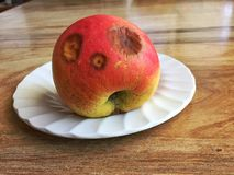 Rotten Apple With A Funny Face Royalty Free Stock Image