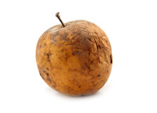 Rotten apple isolated Royalty Free Stock Photo