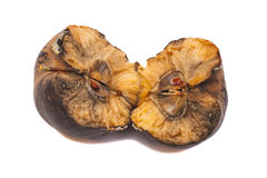 Rotten apple Royalty Free Stock Images
