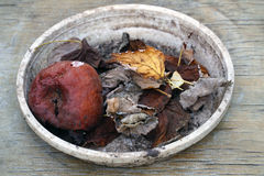 Rotten apple with leaves in a bowl Stock Photography