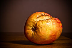 Rotten Apple Royalty Free Stock Photo