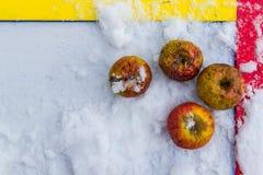 Rotten apple in snow. Frozen apple. royalty free stock image