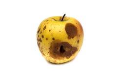 Rotten apple Royalty Free Stock Photo