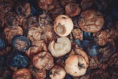Rotten apples. Lie in a wooden box royalty free stock photography