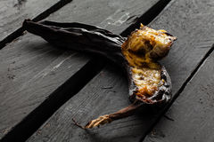 Rotten Banana Stock Photography