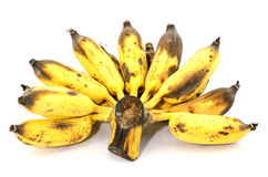 Rotten banana Royalty Free Stock Photo