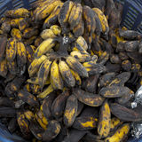 Rotten banana Stock Image