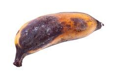 Rotten banana Stock Images