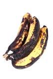 Rotten bananas Stock Image