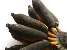 Rotten bananas. Overripe (rotten) bananas on white background Royalty Free Stock Photos