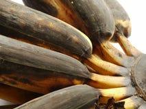 Rotten bananas. Overripe (rotten) bananas on white background Stock Photo