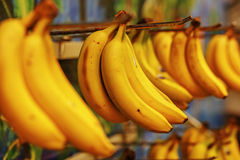 Rotten bananas sold in supermarkets in the Third World Stock Image