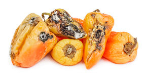 Rotten bell peppers Stock Photos
