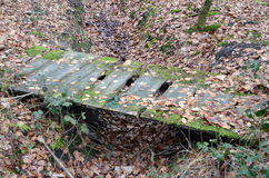 Rotten Bridge. Quite rotten and decayed wooden bridge in a forest Stock Photos