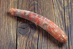 Rotten carrot Royalty Free Stock Image