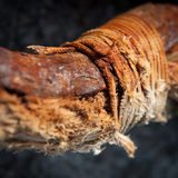 Rotten cord and rusty iron Royalty Free Stock Photography
