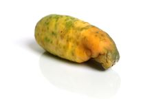 Rotten cucumber. Isolated on the white background Royalty Free Stock Photography