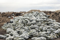 Rotten cucumbers in plastic sacks on the landfill Stock Image