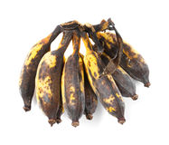 Rotten cultivated banana Royalty Free Stock Photos