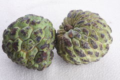Rotten custard Apples. On white background Stock Images