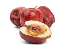 Rotten cut red apple Royalty Free Stock Image