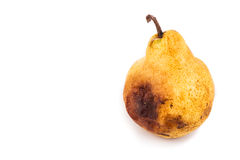 Rotten and decomposing pear on white background Royalty Free Stock Images