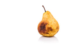 Rotten and decomposing pear on white background Royalty Free Stock Photos