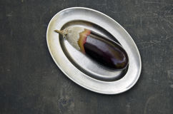 Rotten eggplant aubergine decay on metal plate. And black grunge background Stock Images
