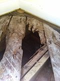 Rotten floor boards stock photos