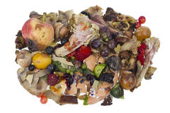 Rotten food waste isolated concept. Garbage dump rotten food waste isolated concept royalty free stock image