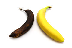 Rotten and fresh. Bananas. Element of design Royalty Free Stock Images