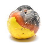 Rotten fruit Stock Images