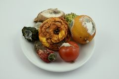 Rotten fruits and vegetables stock images. Moldy fruit and vegetables on a plate. Moldy fruits and vegetables on a white background Stock Photo
