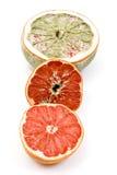 Rotten grapefruit Royalty Free Stock Photo