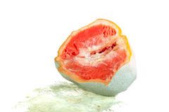 Rotten grapefruit half isolated on white Royalty Free Stock Photo
