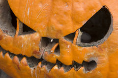 Rotten Halloween Pumpkin Royalty Free Stock Images