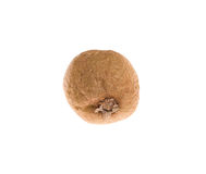 Rotten kiwi fruit. Stock Photography