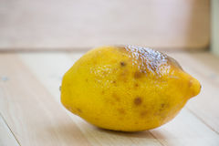 Rotten lemon put on wooden table Stock Photos