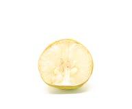 Rotten lemon Stock Photography